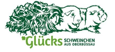 Banner Glücksschweinchen aus Oberbüssau